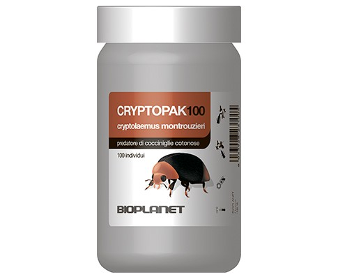 Criptopak 100